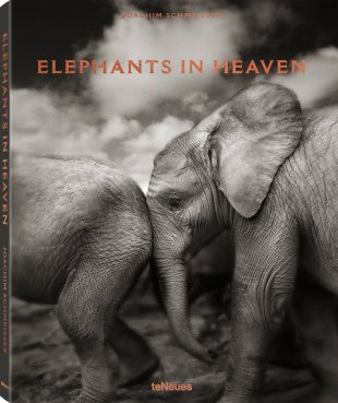 Elephants in Heaven (teNeues)
