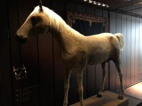 Napoleon's horse, Vizier