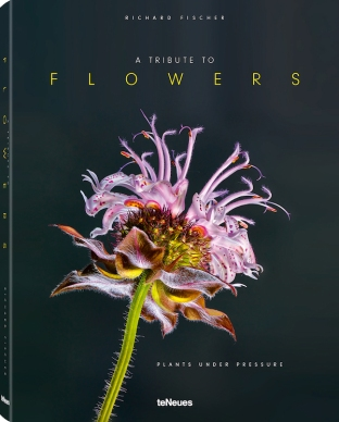 © A Tribute to Flowers - Plants under Pressure by Richard Fischer, published by teNeues