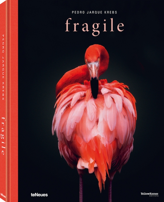 © fragile by Pedro Jarque Krebs, published by teNeues, $ 65, www.teneues.com
